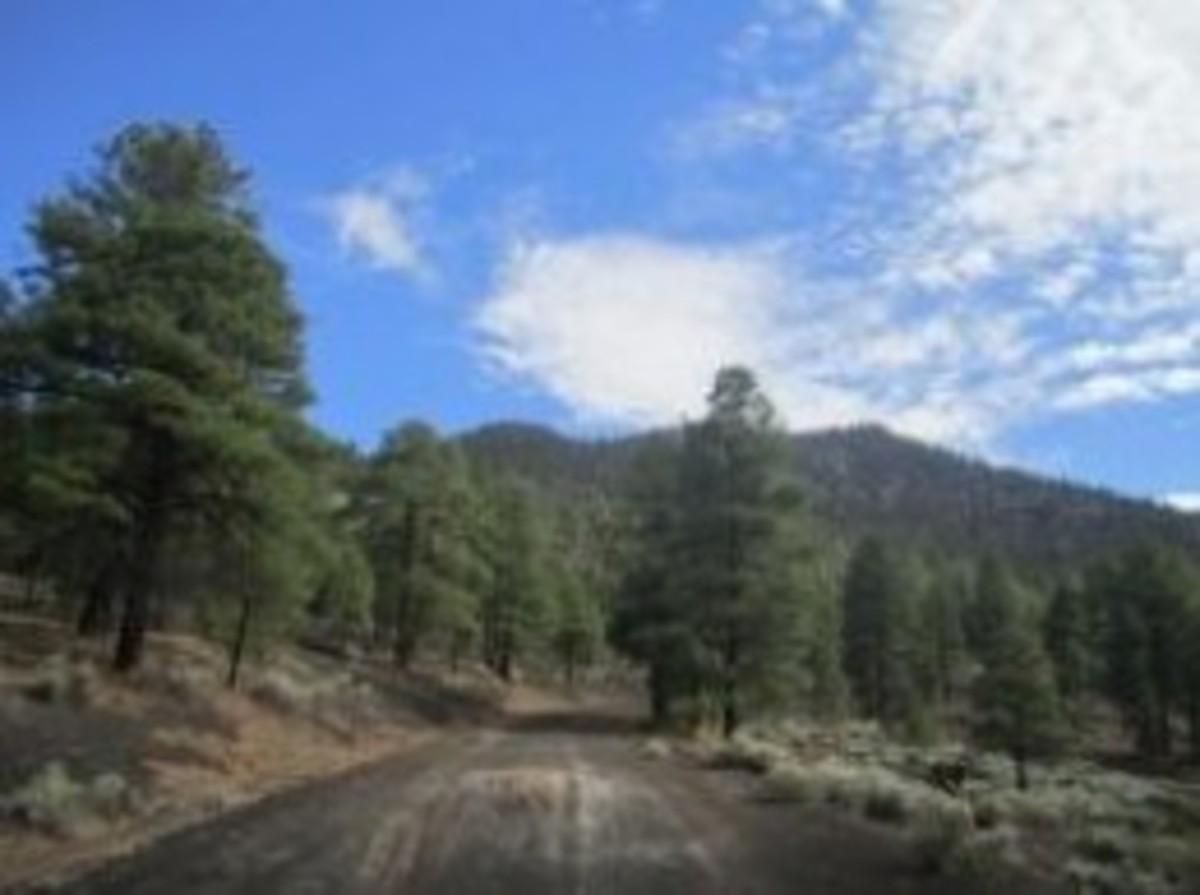 O'Leary Peak, Flagstaff, Arizona