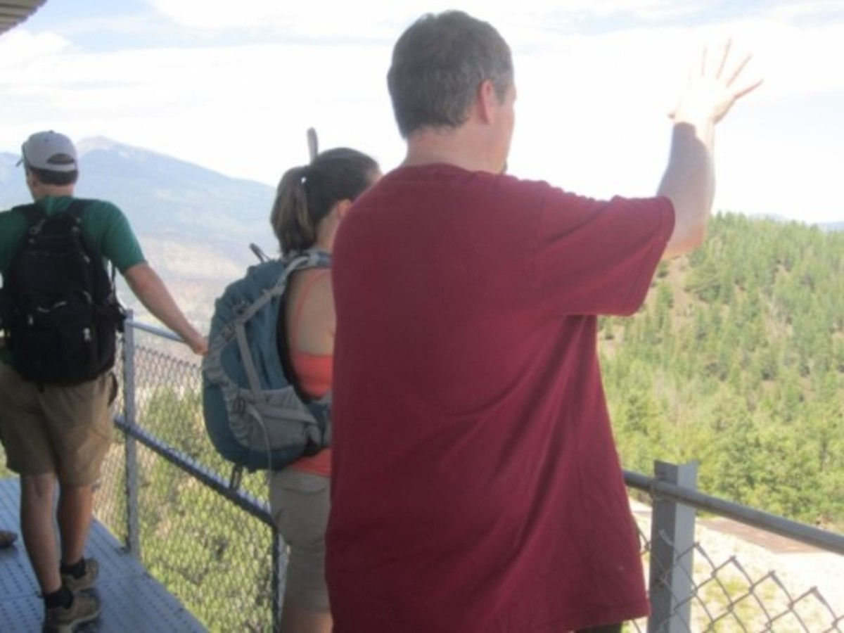 On the O'Leary Fire Tower