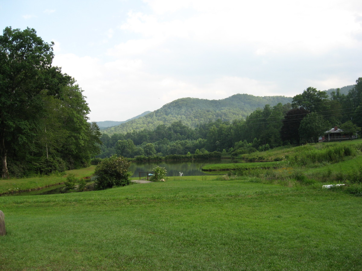 Blue Ridge Mountains in July