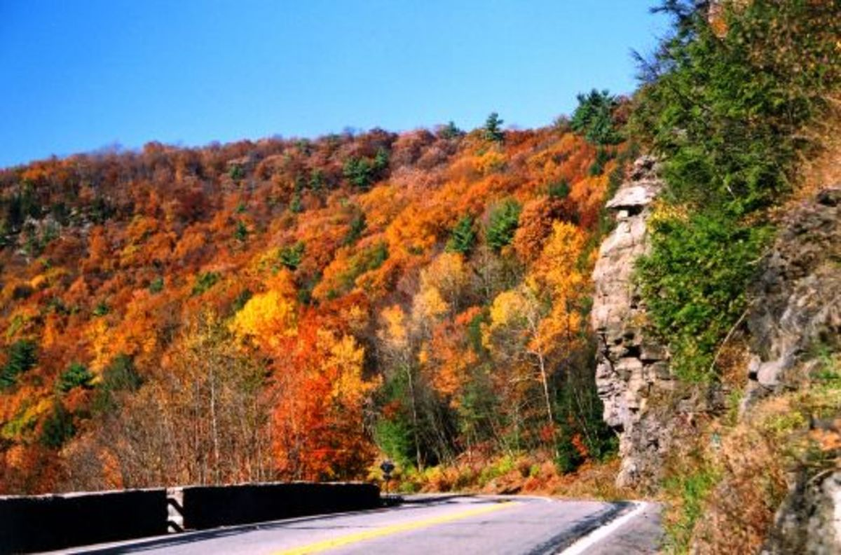 Autumn in the Appalachian Mountains.