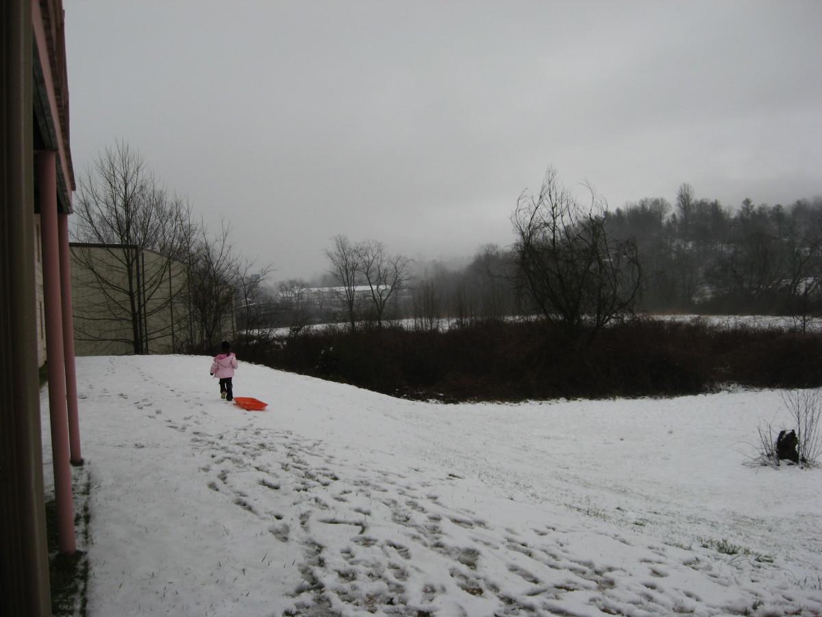 Georgia Blue Ridge Mountains in January