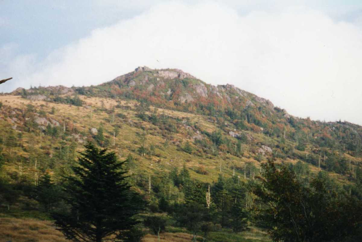 """The Grayson Highlands State Park in Virginia is a welcome escape from the """"green tunnel."""""""