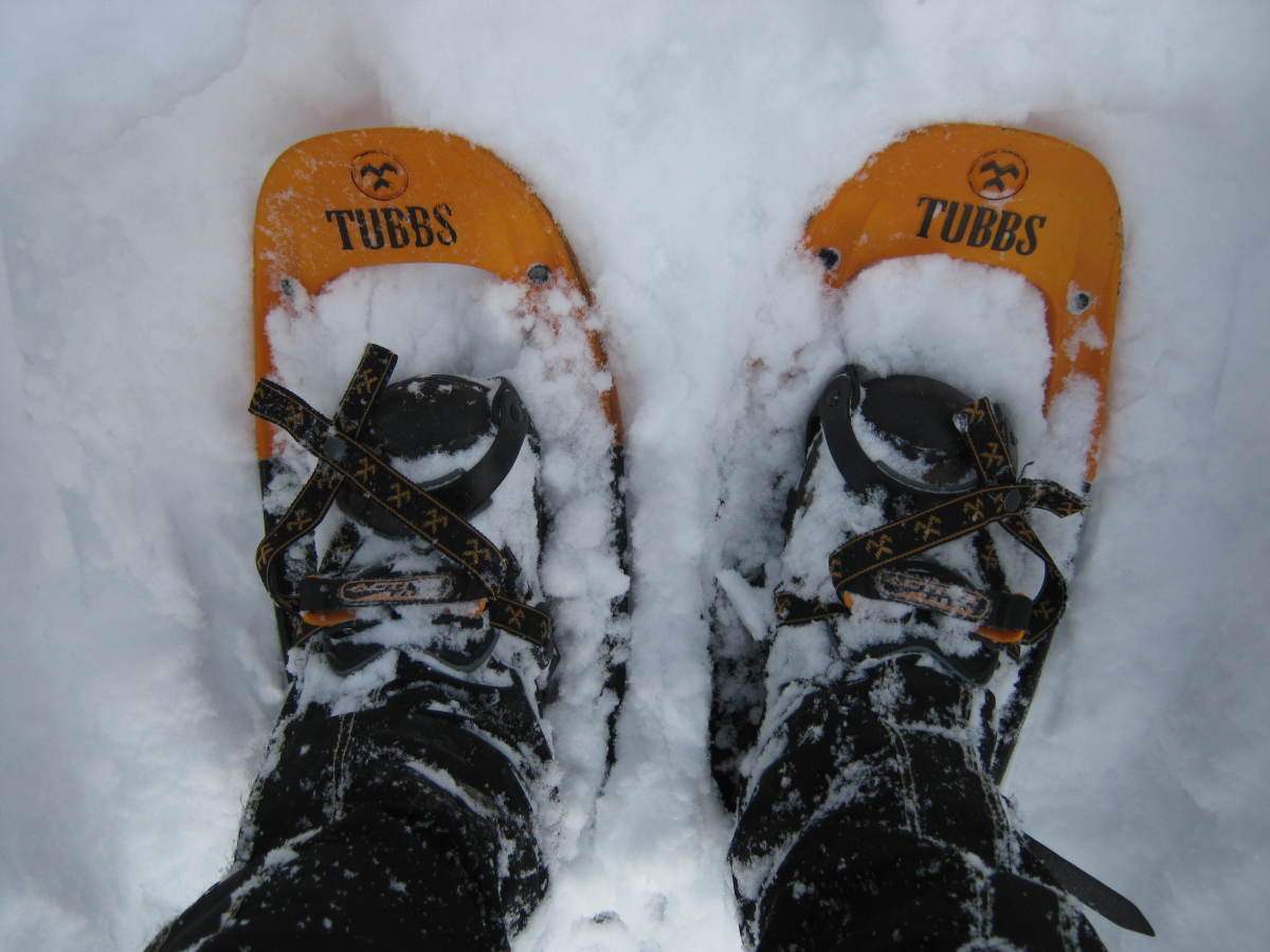 Snowshoes, like the Alps from Tubbs here, are best on the snow and not for crossing narrow log bridges.