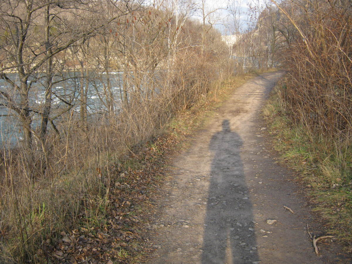 My shadow, my companion, along the trail in the bottom of the gorge.