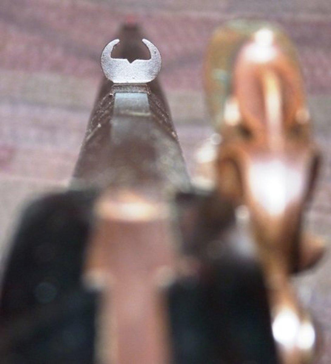 buckhorn sight