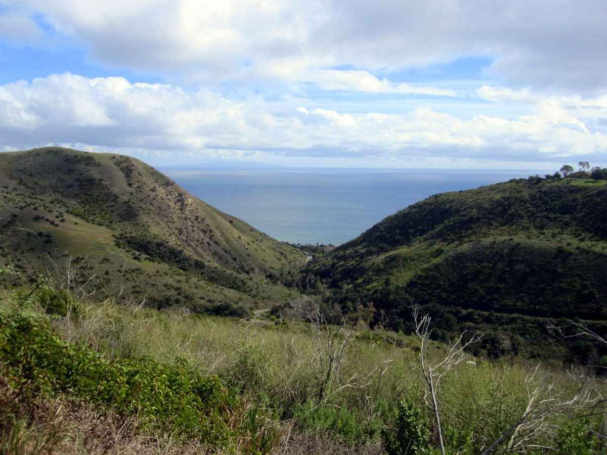 Ocean view from the TRW Overlook along the Rising Sun Trail