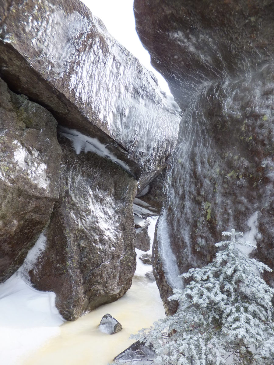 Passing through ice-encrusted boulders in Colden's alpine zone.