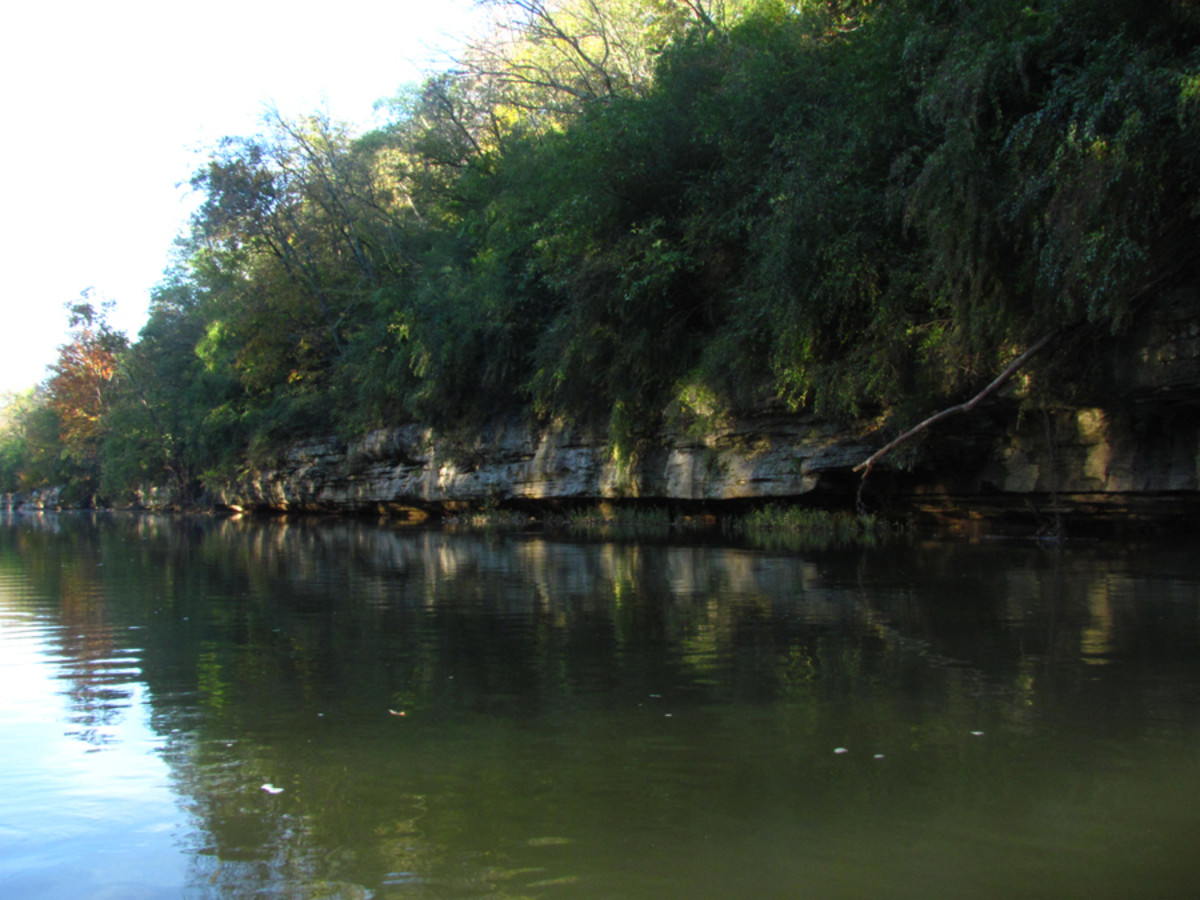 Long stretches of calm water make for constant but easy paddling while traversing the Duck River.