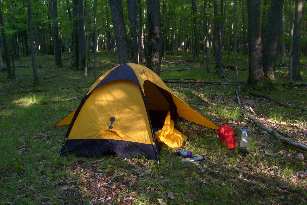A  free wooded campsite in Letchworth State Park.