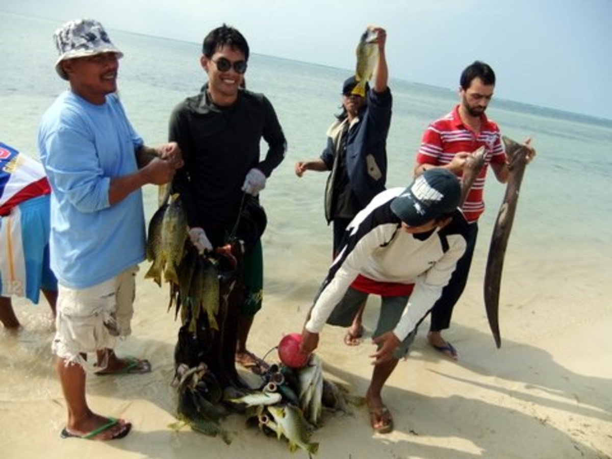 Fish red sea: Finally, the fish were brought to shore