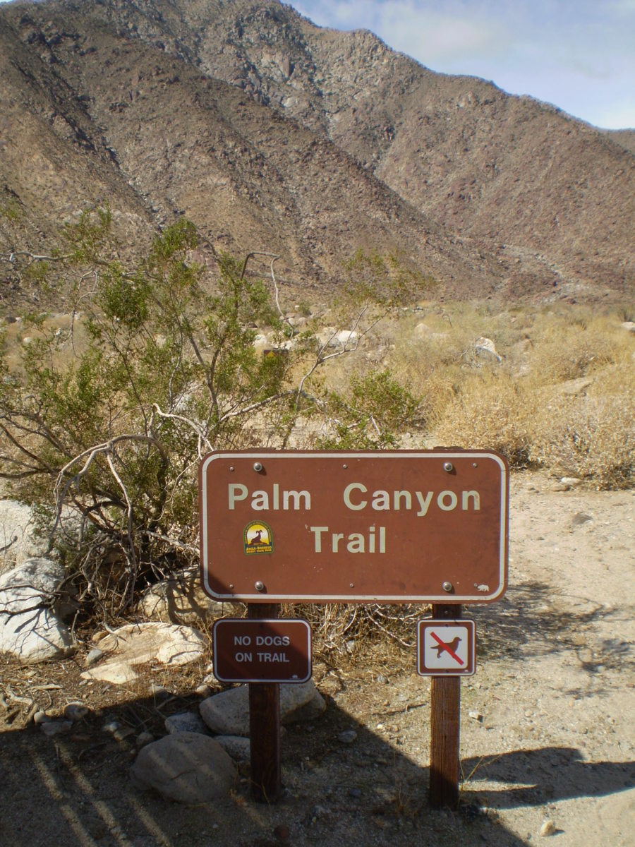 Borrego Palm Canyon hiking trail. Anza-Borrego Desert State Park.