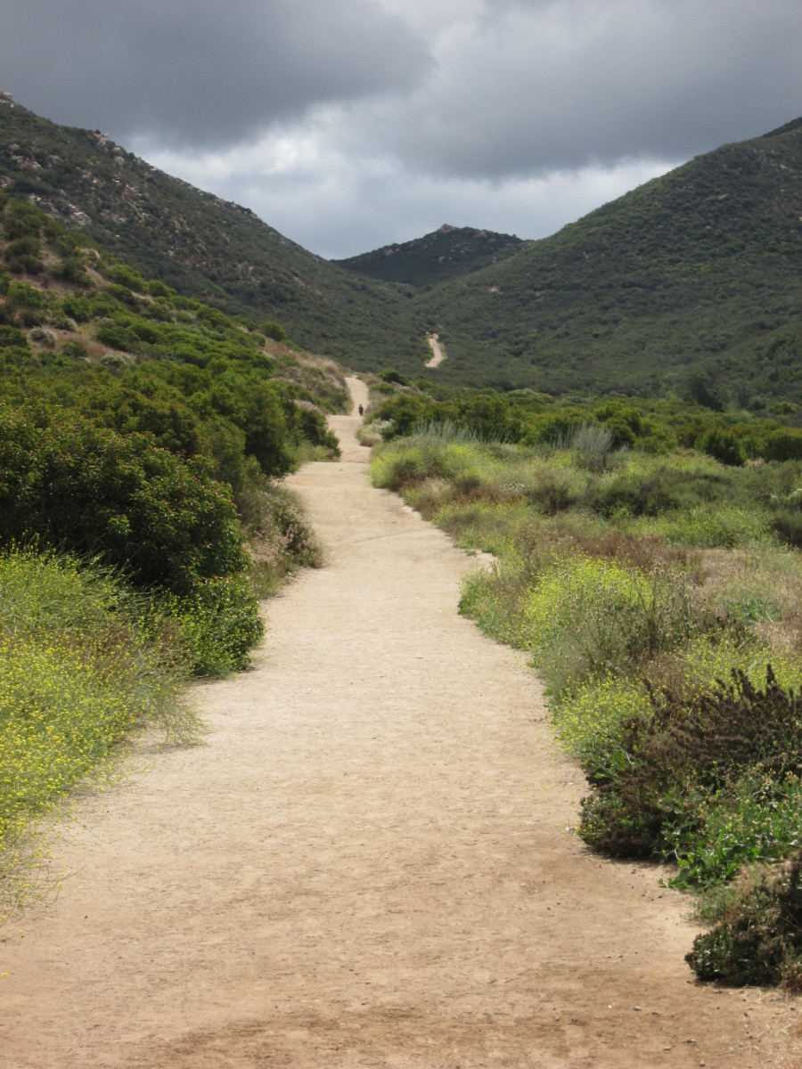 Trail to Iron Mountain, Poway, CA.