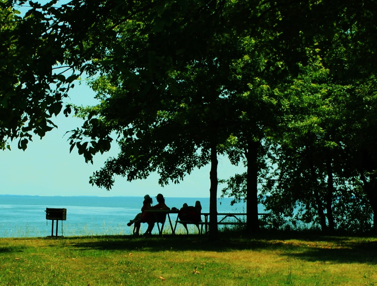 Picnickers relax by the water on St. Clement's Island, MD.
