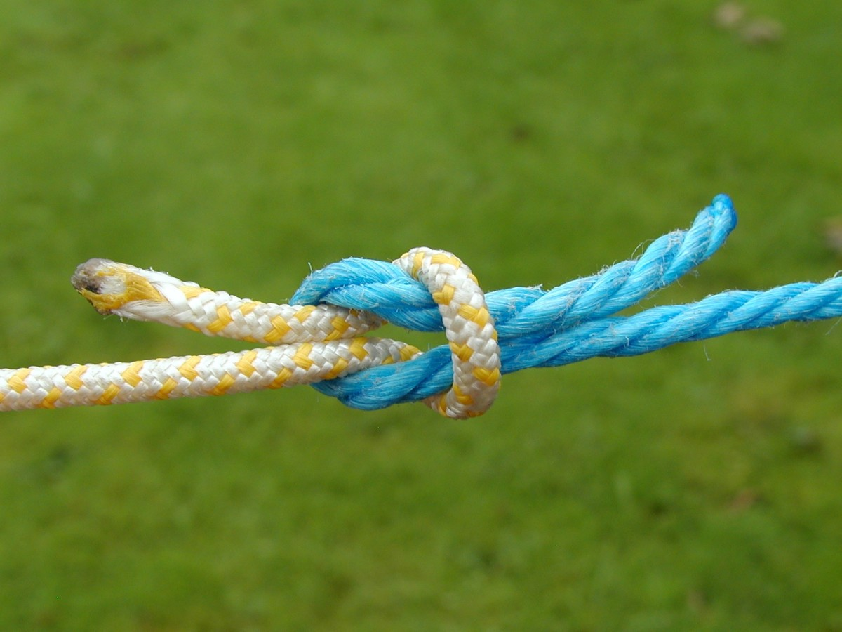 Reef or square knot