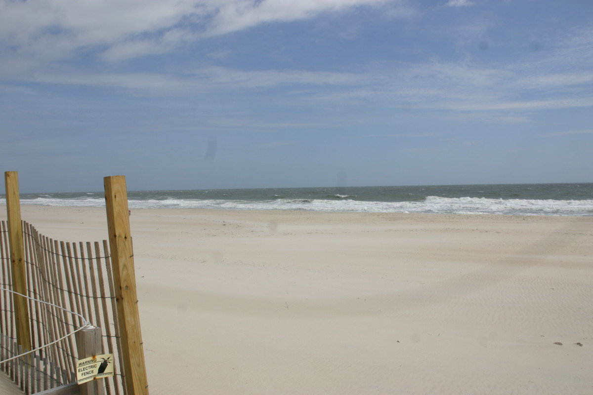 The beach in Assateague State Park
