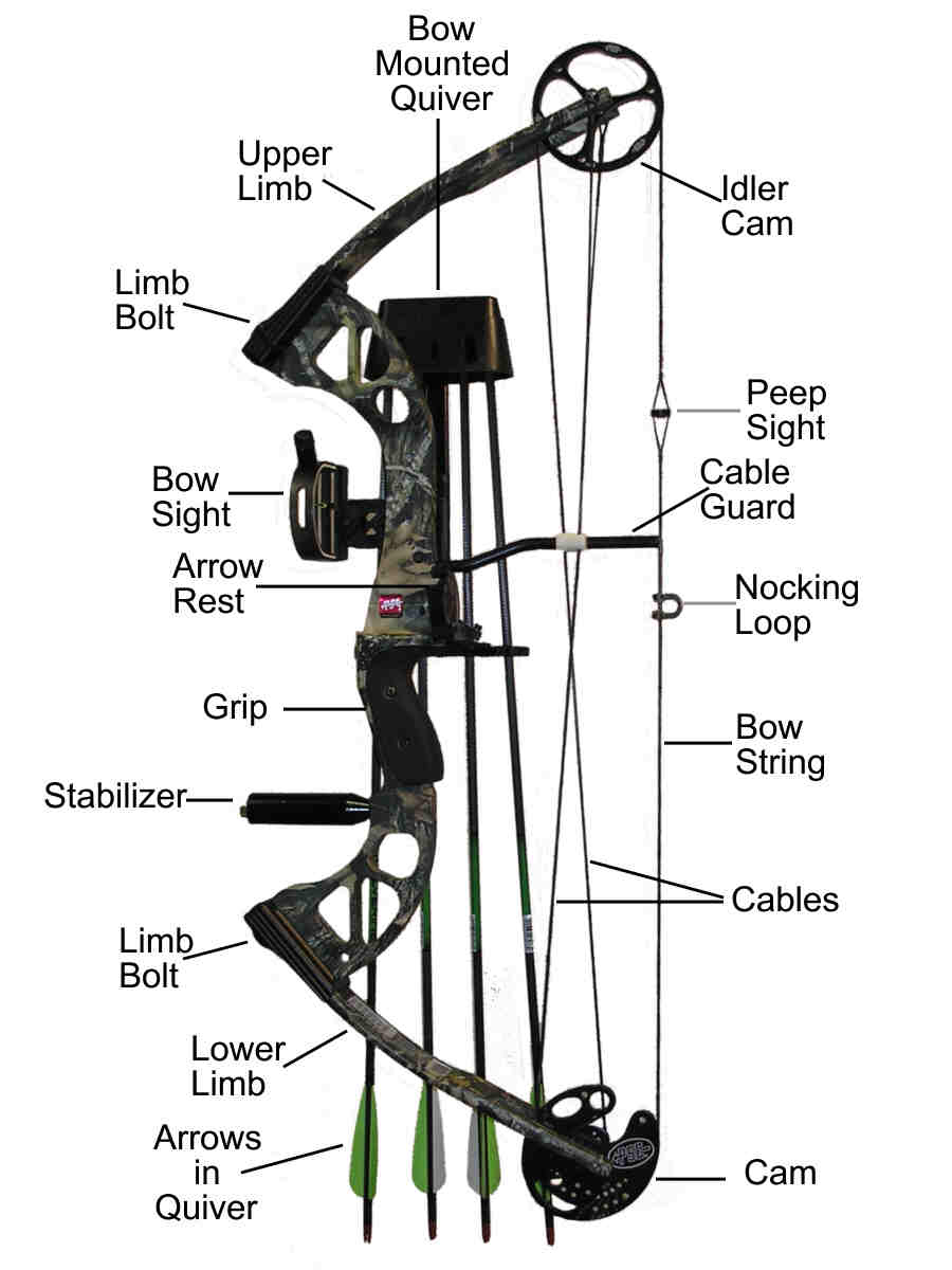 Compound bows can be complex!