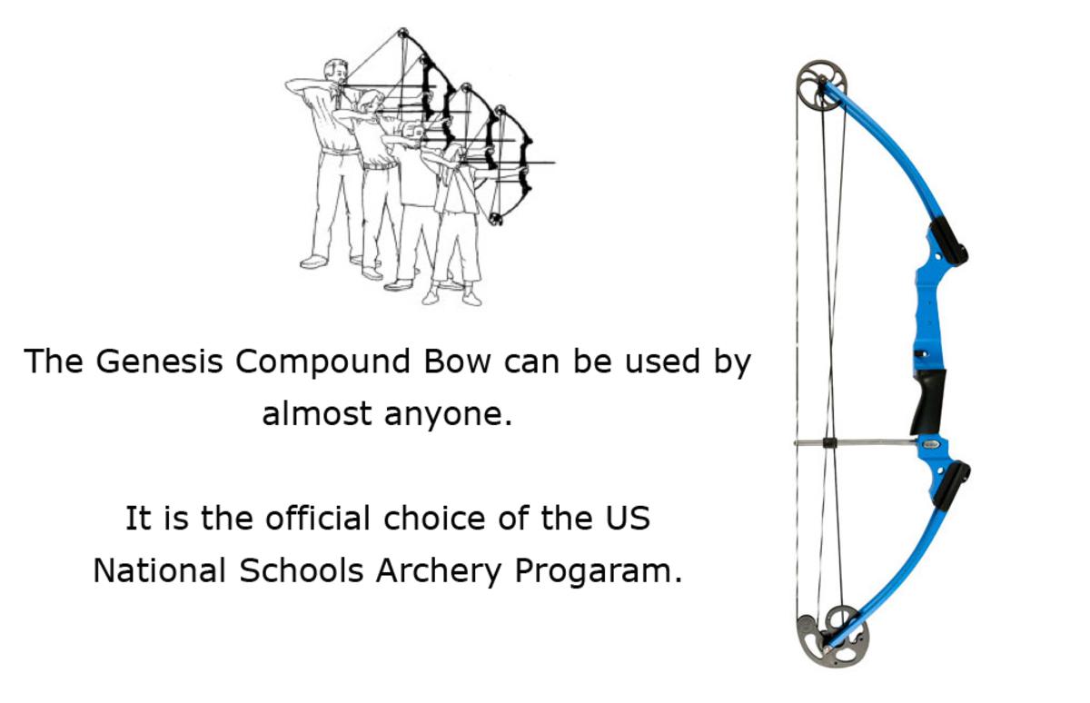 The Best Beginner Bows For Target Archery Skyaboveus