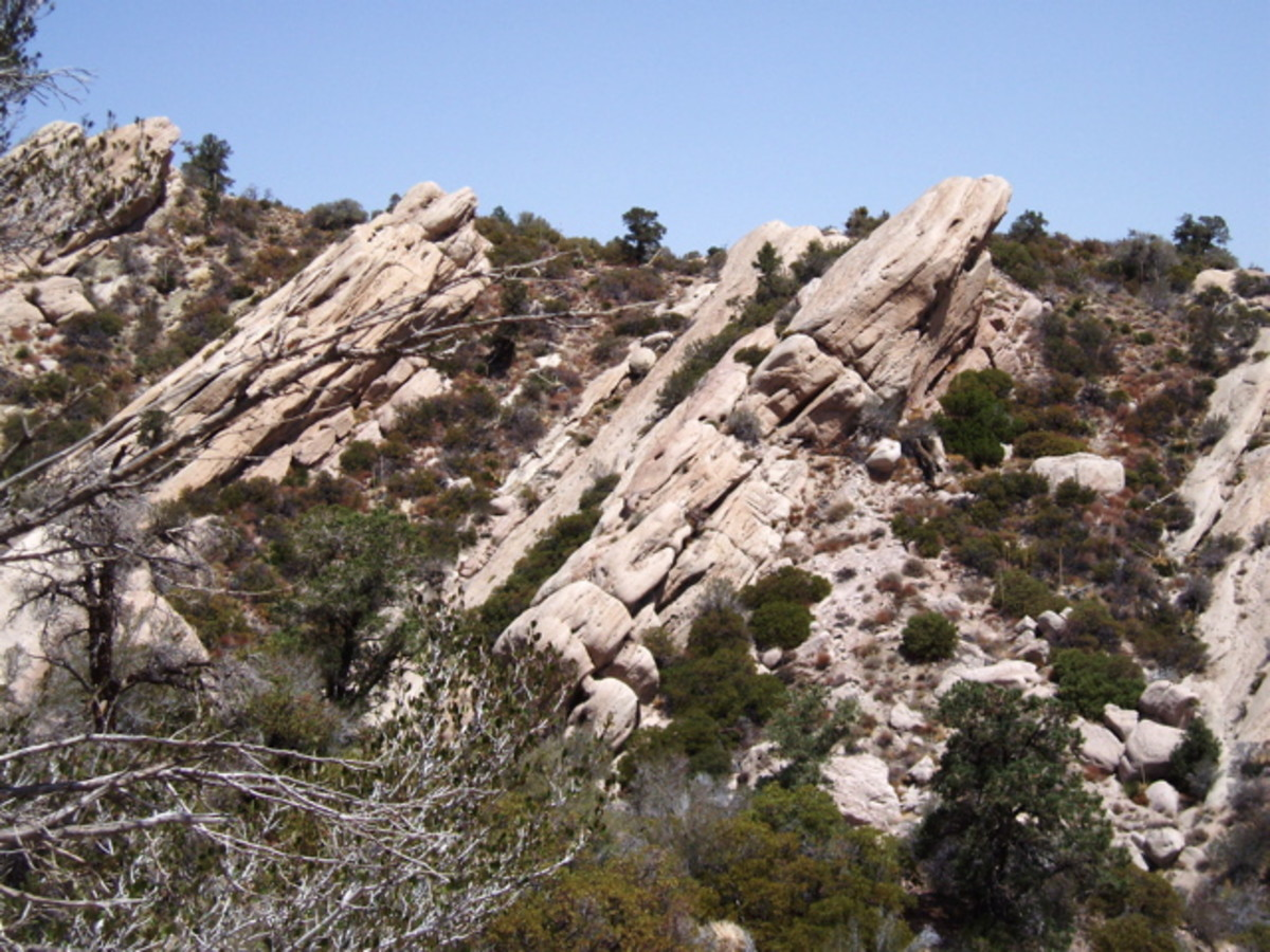 These rock cliffs off to the left of the trail, topped by pine trees, were pushed up by the Pinyon Fault in the opposite direction from the rest of the canyon.