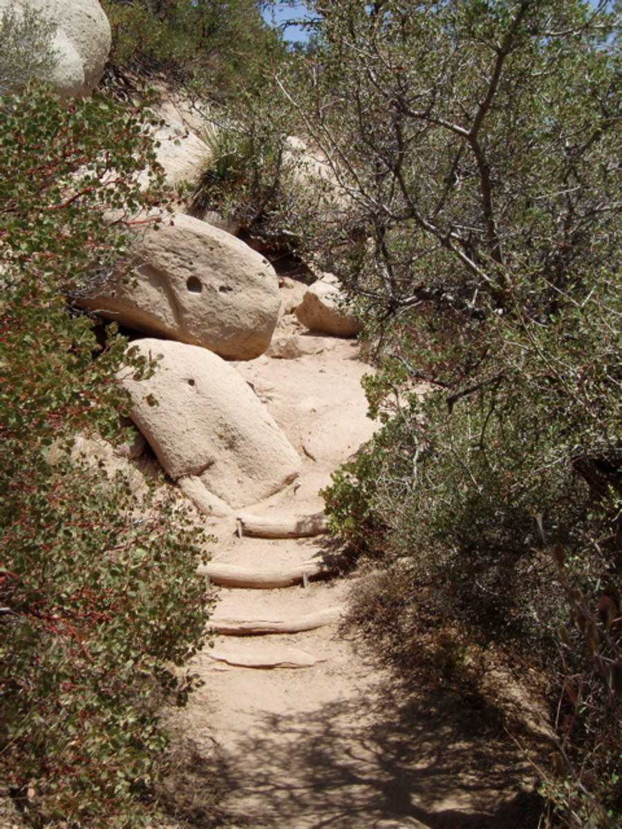 These steps are one of the steepest parts of the trail down.