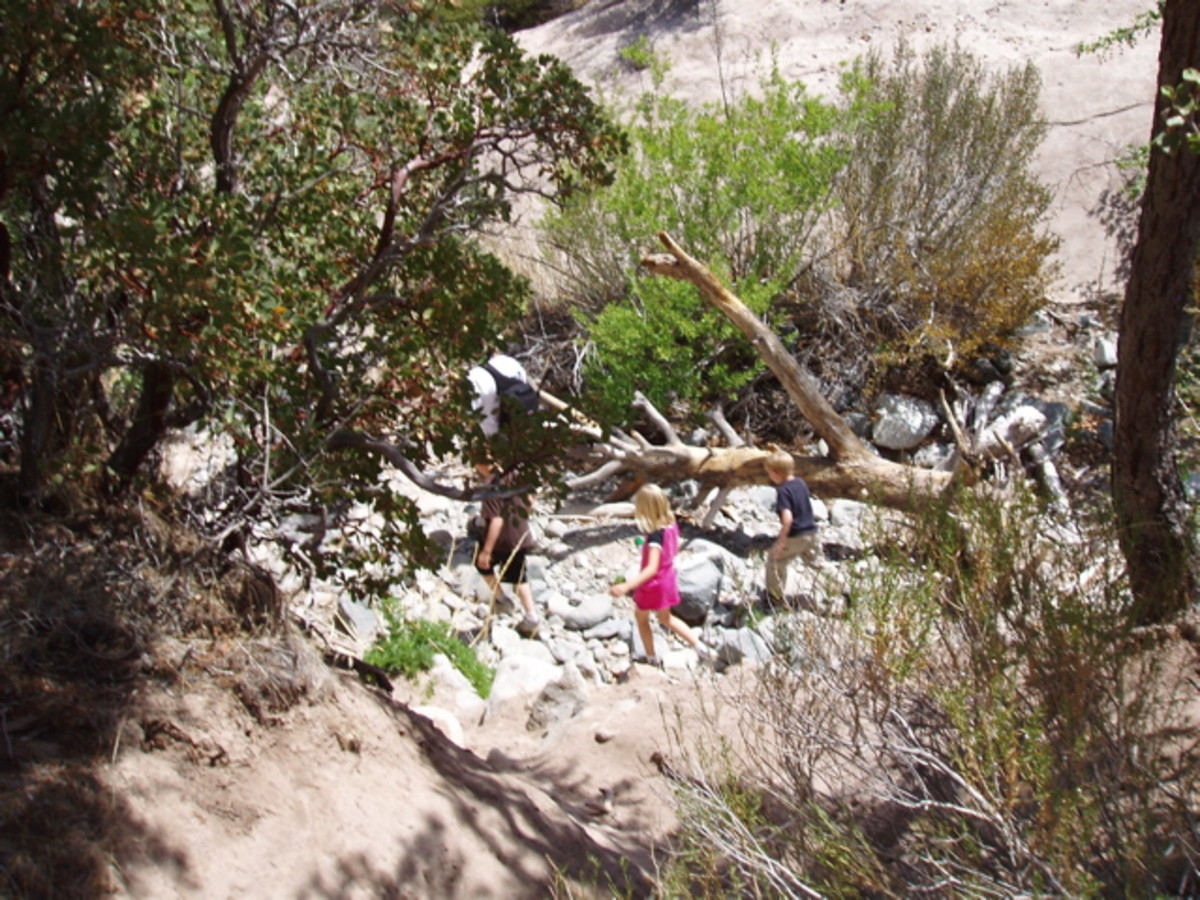 Kids playing in the dry streambed.