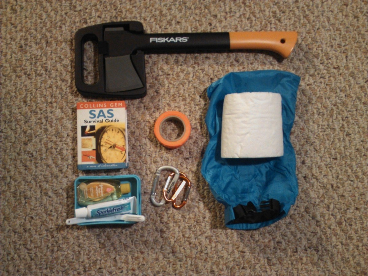 From left to right: hatchet, survival manual, dental hygiene kit, duct tape, carabiners, and toilet paper.