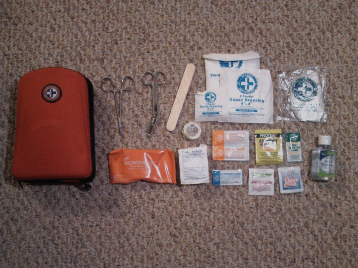 From left to right: first aid kit, surgical scissors, tongue depressor, sterile gauze, gloves, CPR mouth mask, itch and insect ointment, aspirin, sanitary wipes and hand sanitizer.