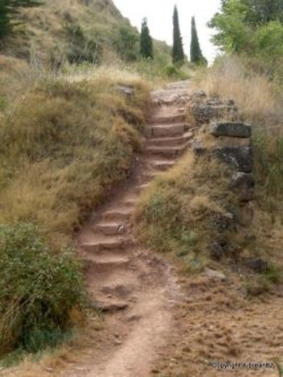 pilgrim, Camino de Santiago