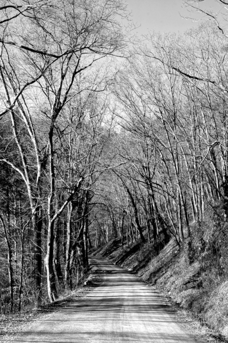 River Road leading to Paint Rock.