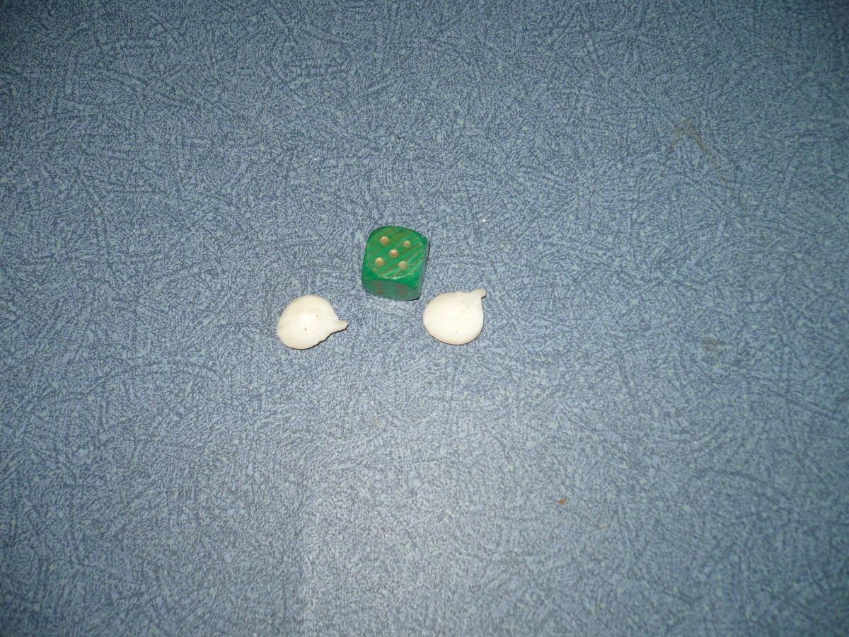Sailcat stones taken from the skeleton