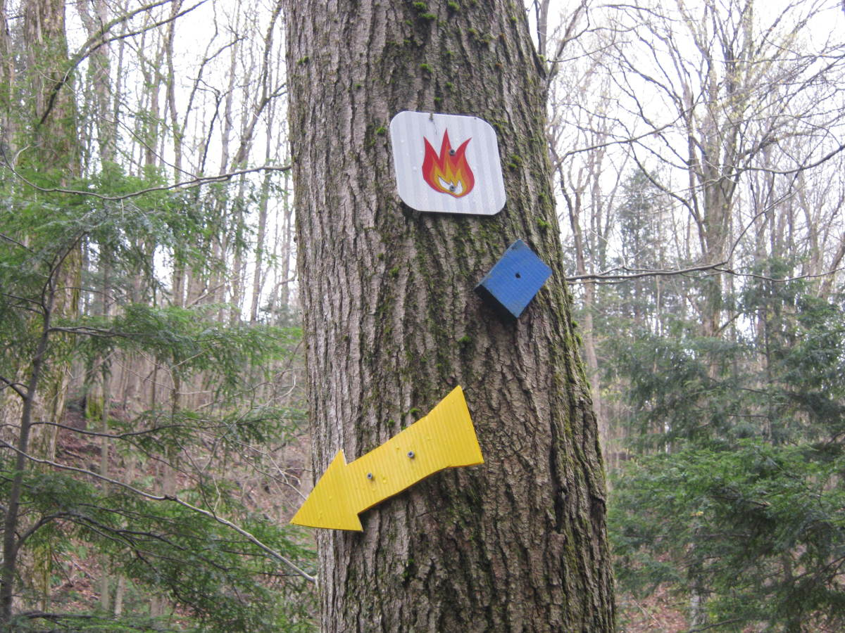 A variety of trail markers on the way to the eternal flame.