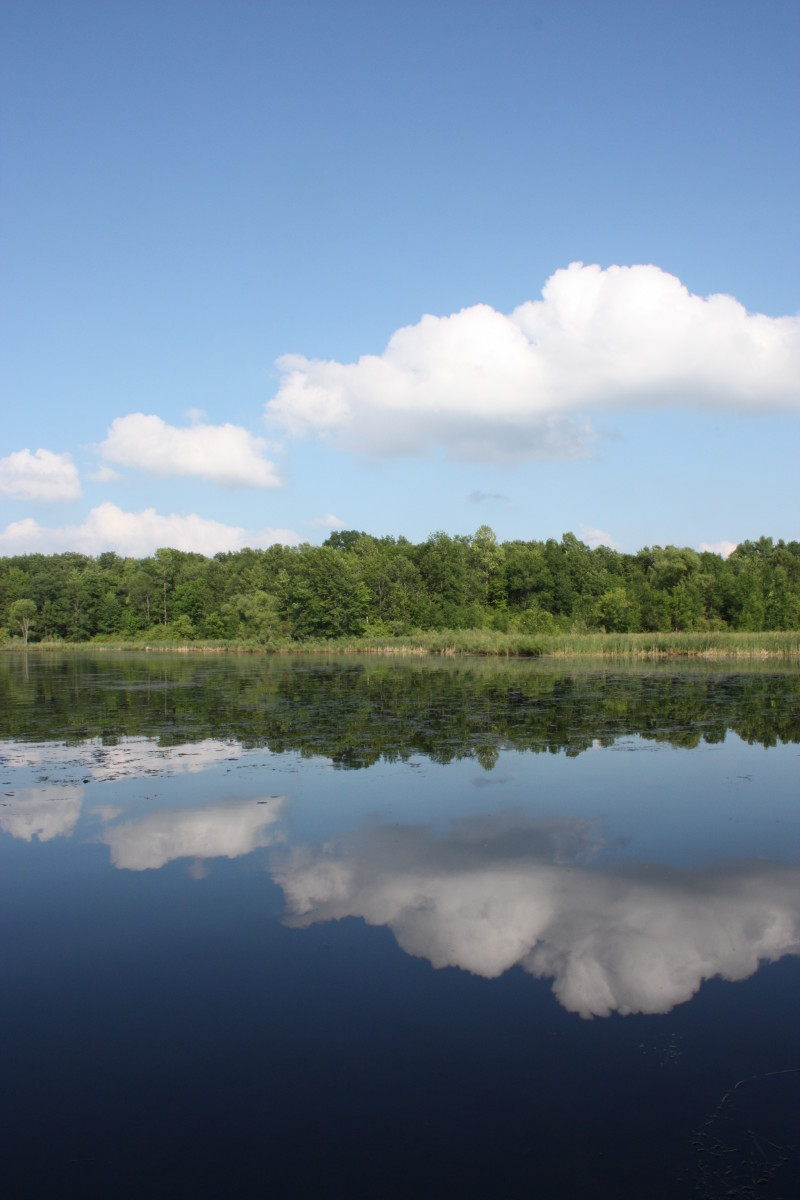 Beautiful sunny day view from the Hoople Island trail.