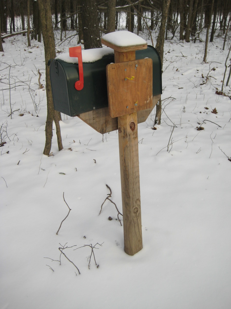 A mailbox register along the Finger Lakes Trail in Letchworth State Park.