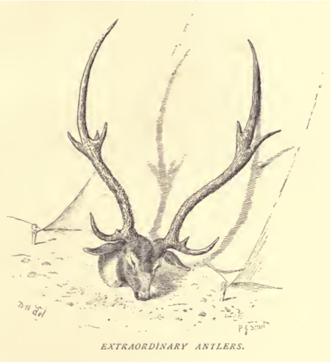 Hamilton, General Douglas (1892)