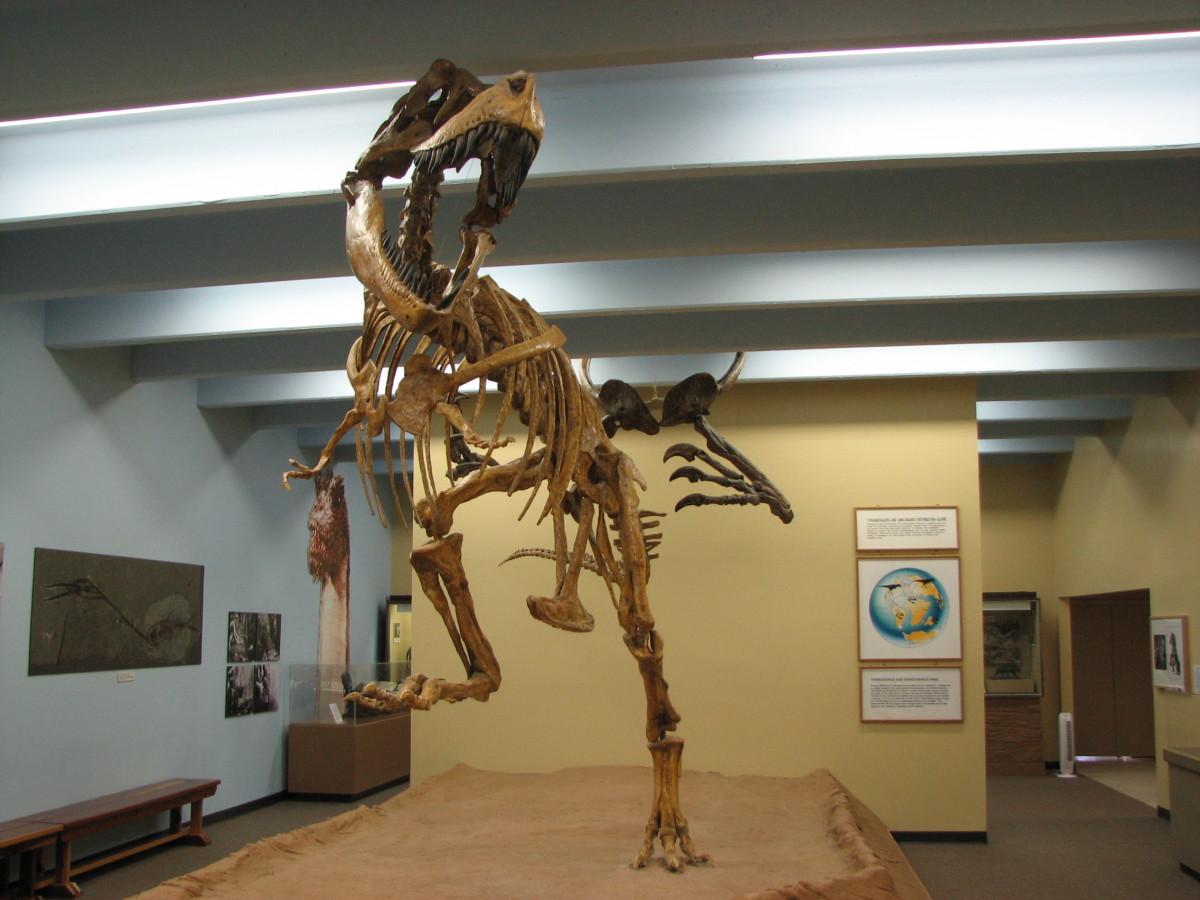 Blanding Dinosaur Museum