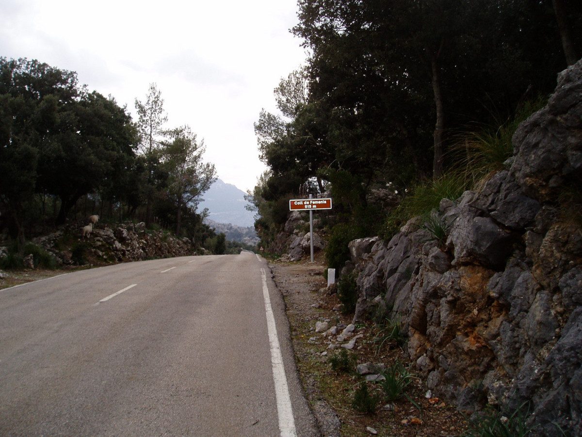 The summit of the Col de Femenia is a drag out of Puerto Pollensa but rewarding for a day in the mountains
