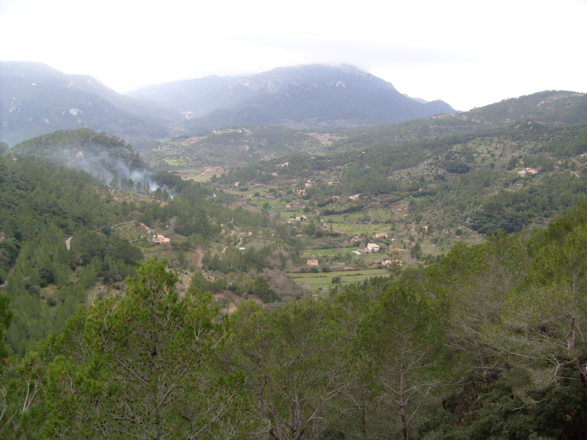 Looking out on the Serra de Tramuntana from the lush greenery of the Coll de Claret