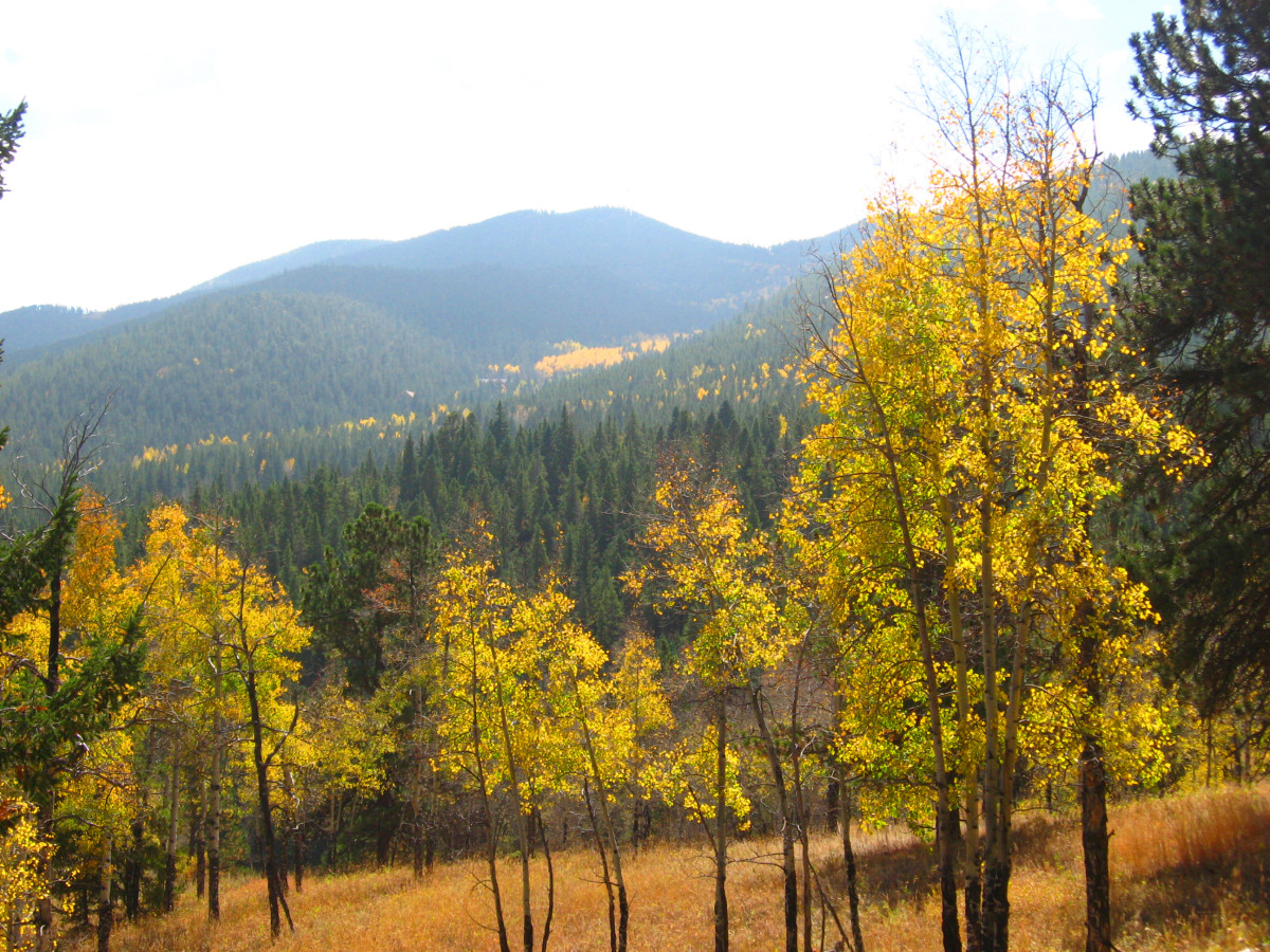 Here is another scene you can capture as you hike down along the ridge on Beaver Trail.