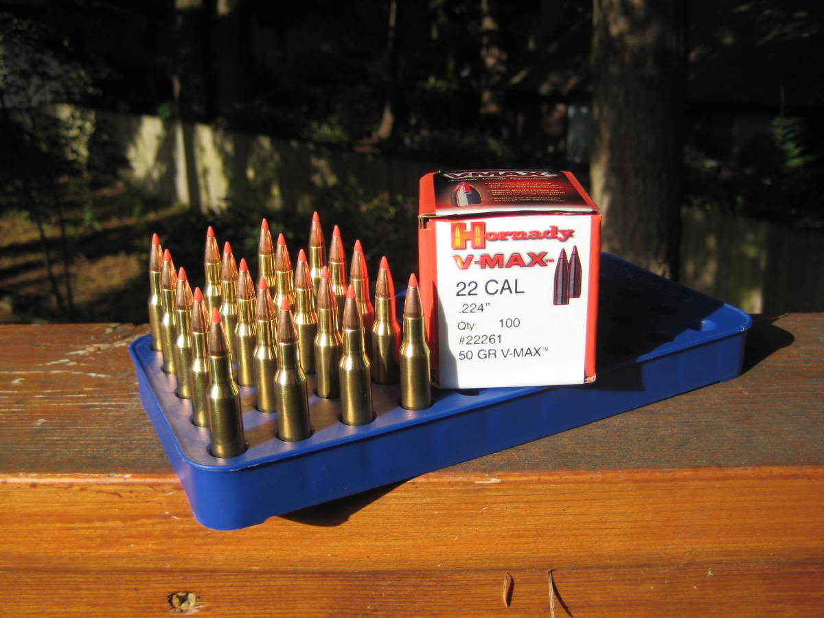 Ammunition prepared for my bolt action .223 rifle