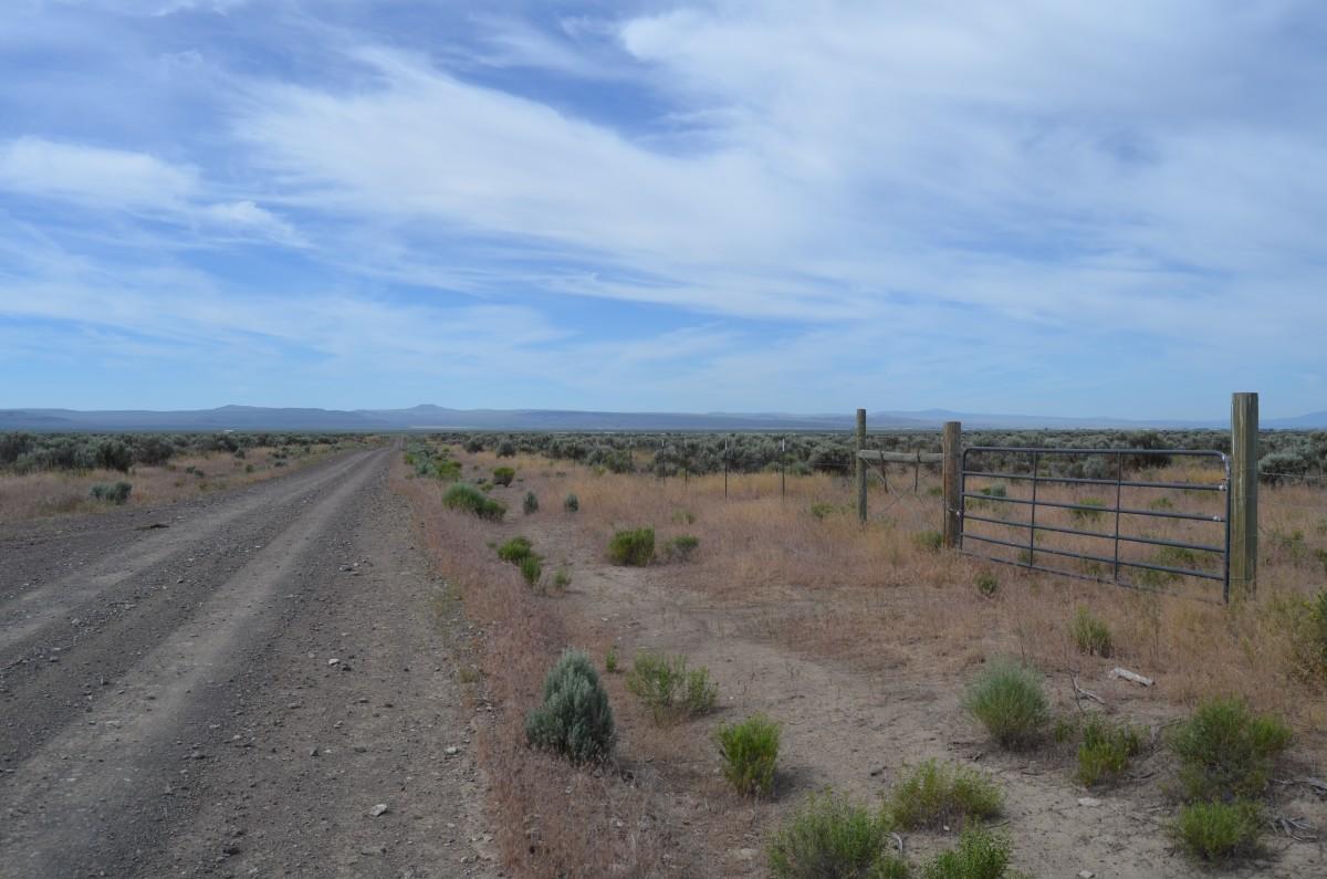 High desert (4,400 ft. ASL) of Lake County, OR.
