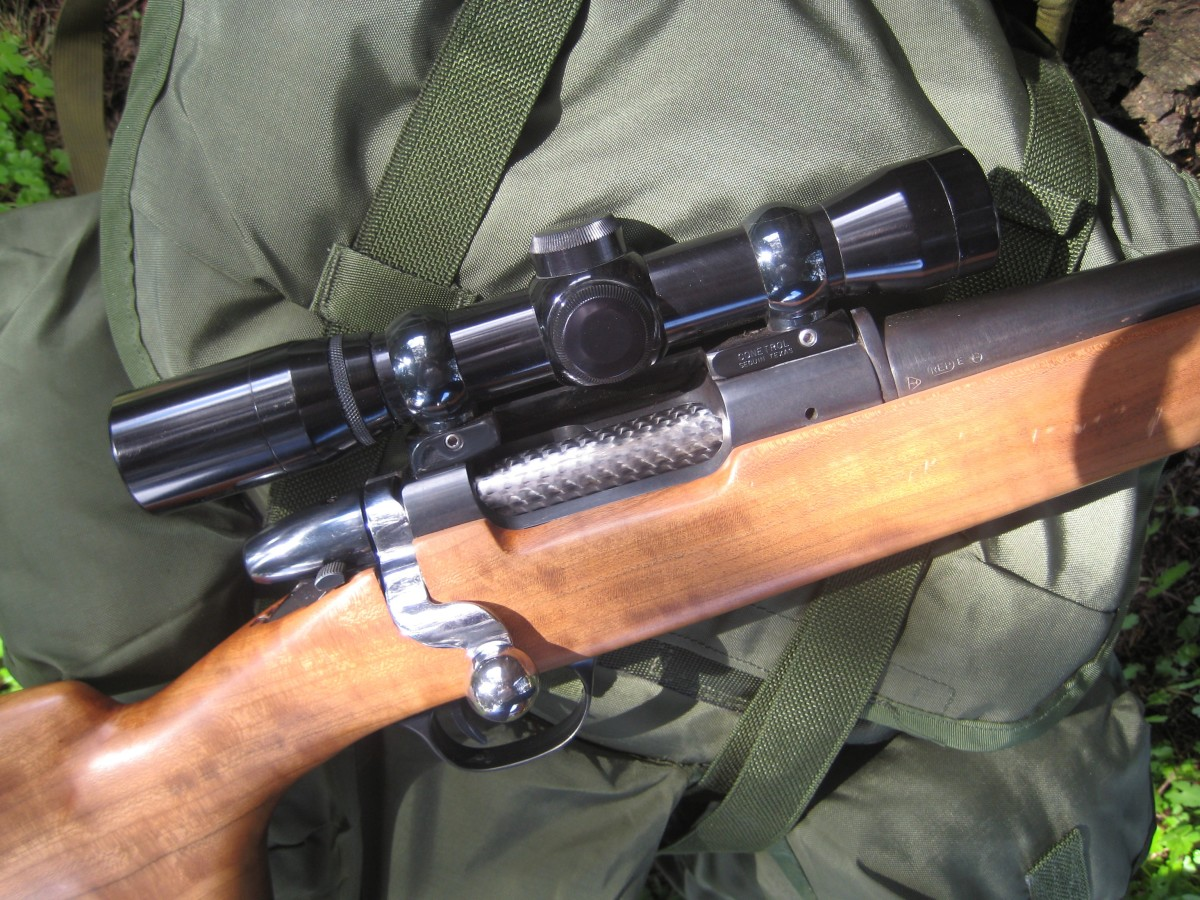 Remington Model 600 in .222 Rem., with Burris 6X Compact Scope