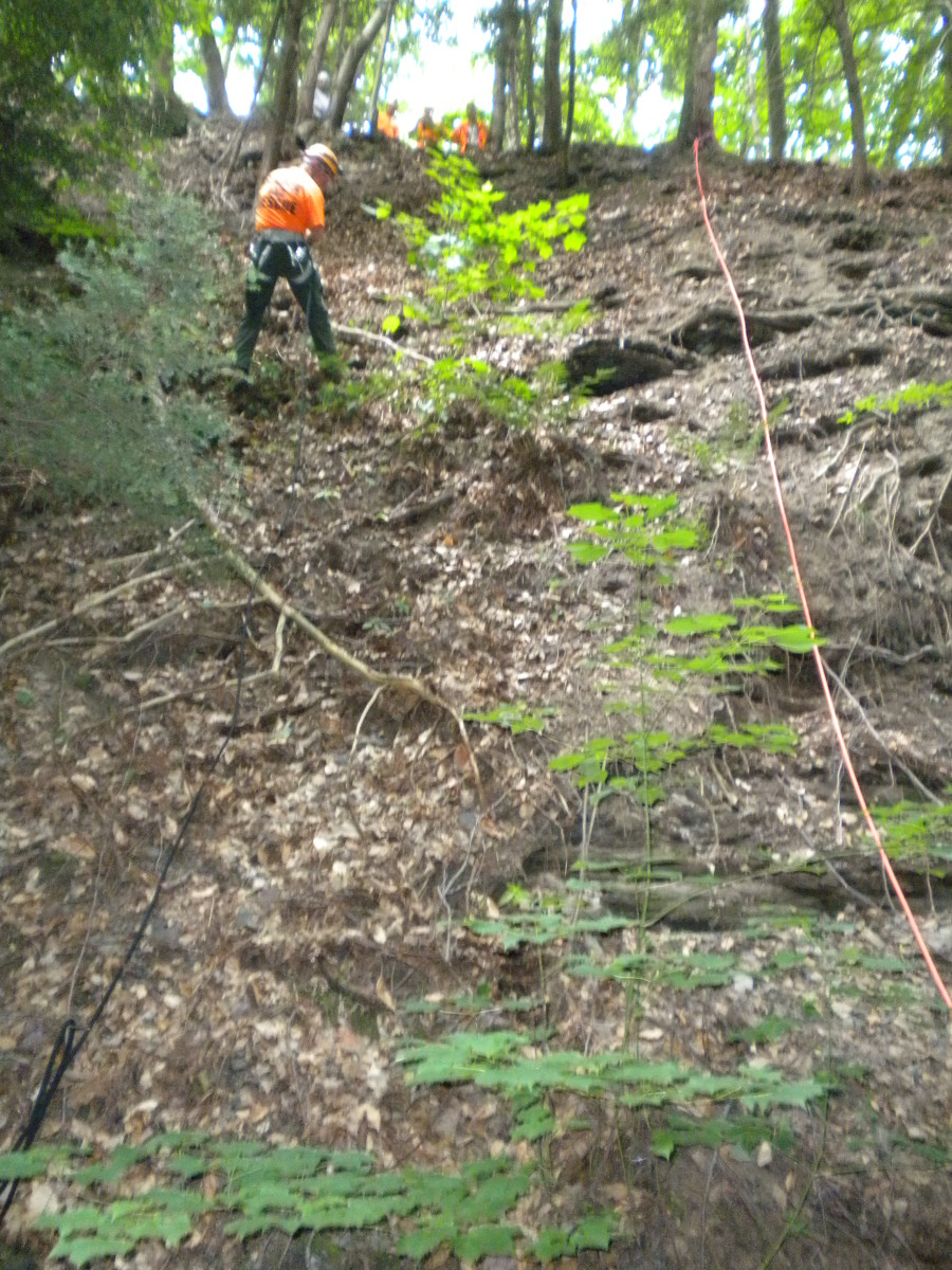 Rappelling is a skill that most SAR teams should master, especially those with steep canyons and cliffs in their area.