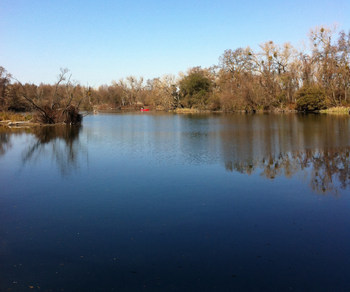 A short, relatively easy nature trail at Lodi Lake Park travels along the lake and the Mokelumne River.