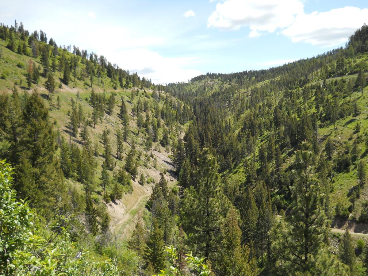 Garnet Range Near  Missoula, Montana