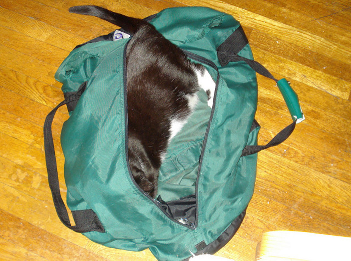 Duffel bags are great for packing; just be sure to remove the cat, first!  Cats love to try to be stowaways. ;-) I can never pack without removing a cat at least twice!