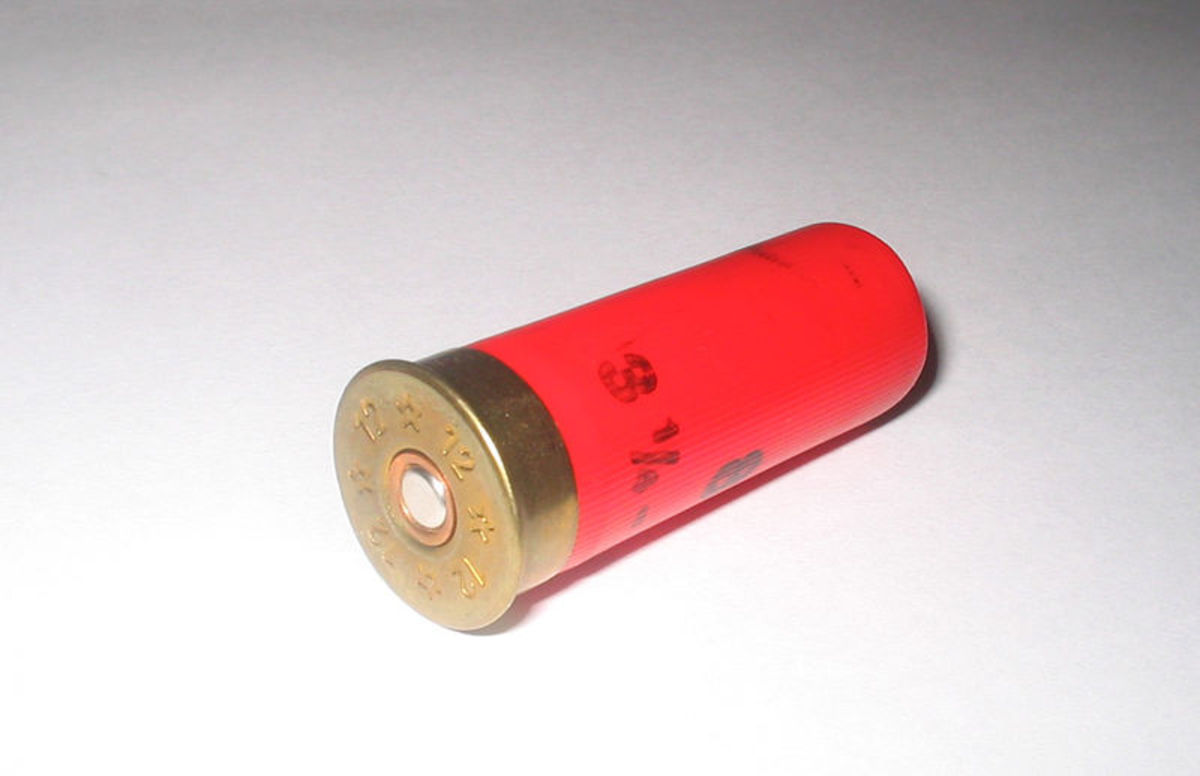 A 12 Gauge Shot Shell