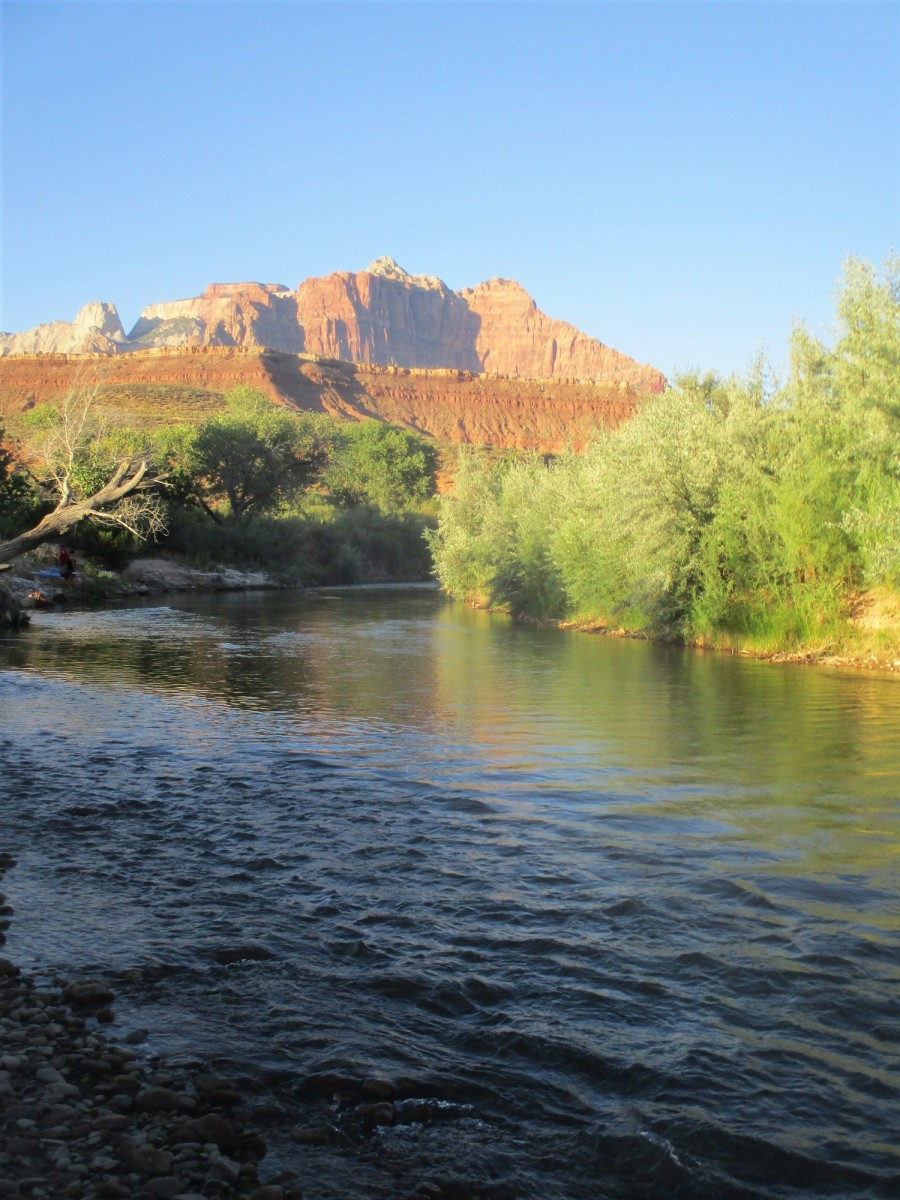 The Virgin River near Rockville, UT is great for a cool dip, but not for drinking, photo by author