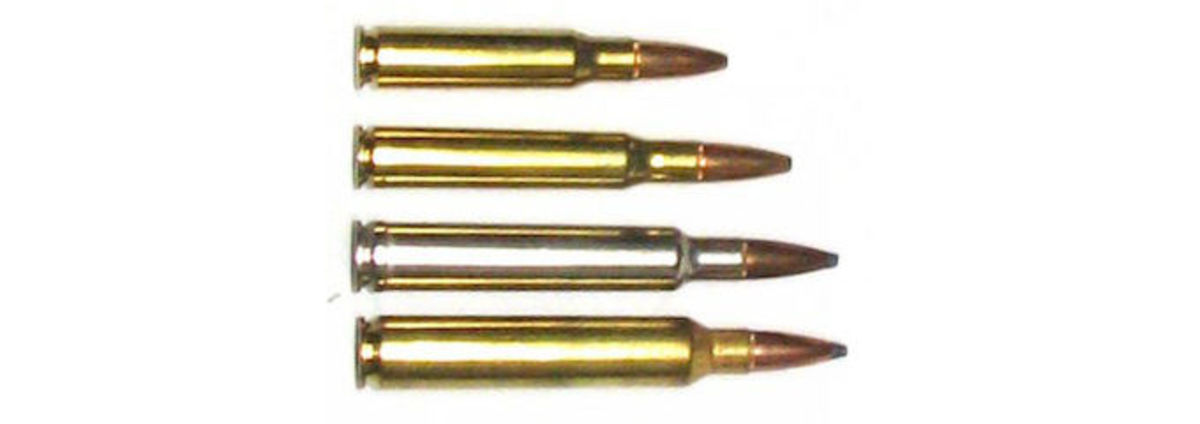 (Top to bottom) .308, .30-06, .300 Weatherby, .300 Rem Ultra Mag