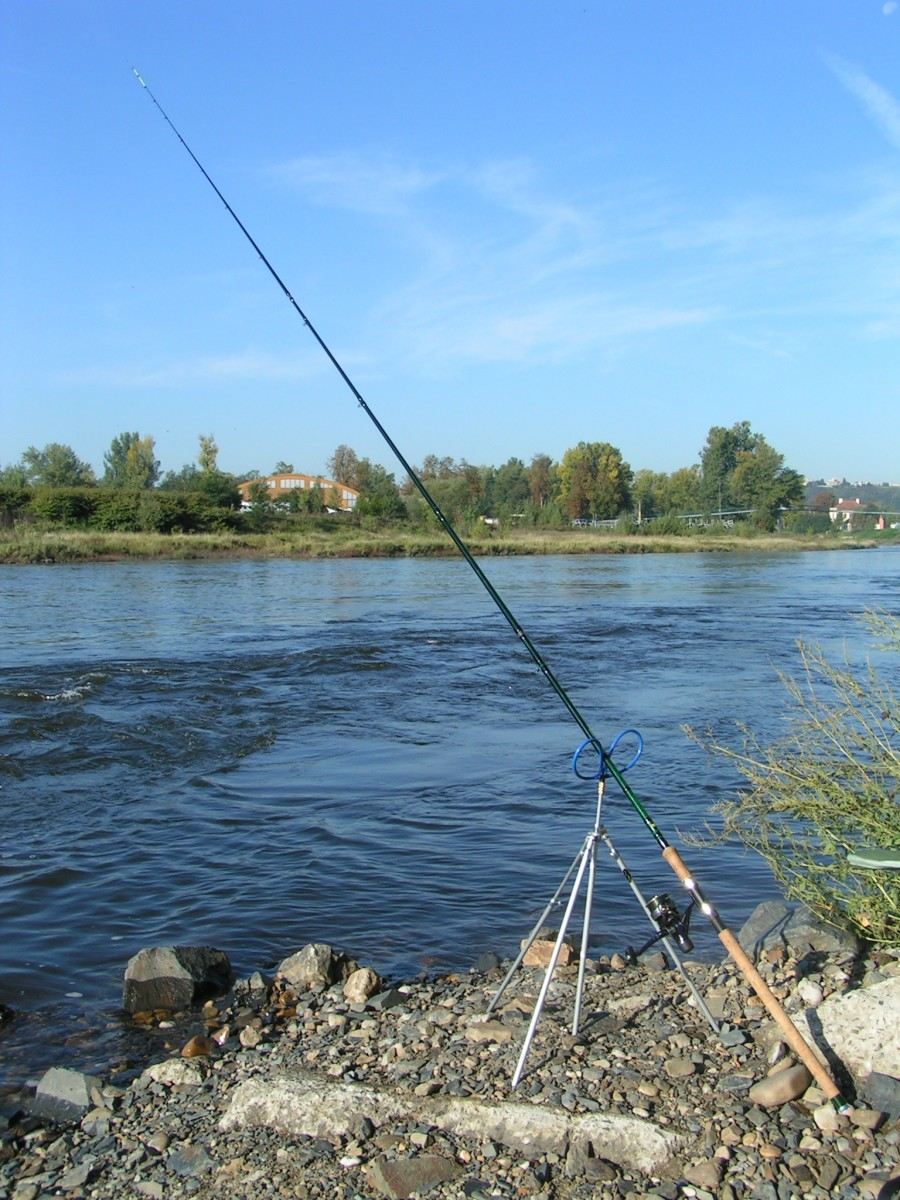 best-fishing-rod-holders