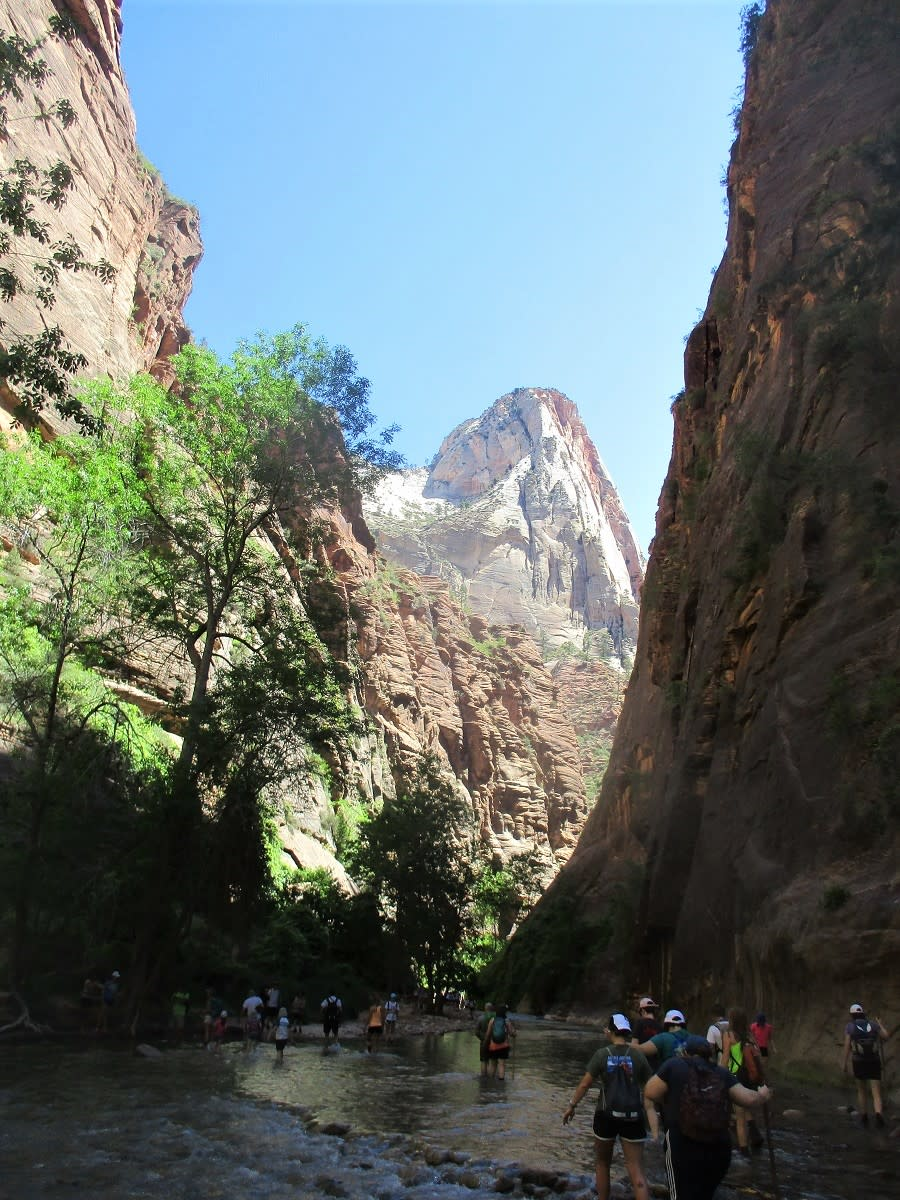 The Narrows is a popular slot canyon trail in Zion NP
