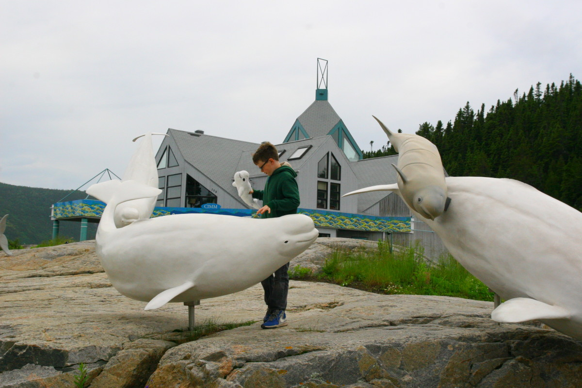A marine mammal interpretation center is located near the harbor in Tadoussac. Take a zodiac tour to see the whales in the wild.